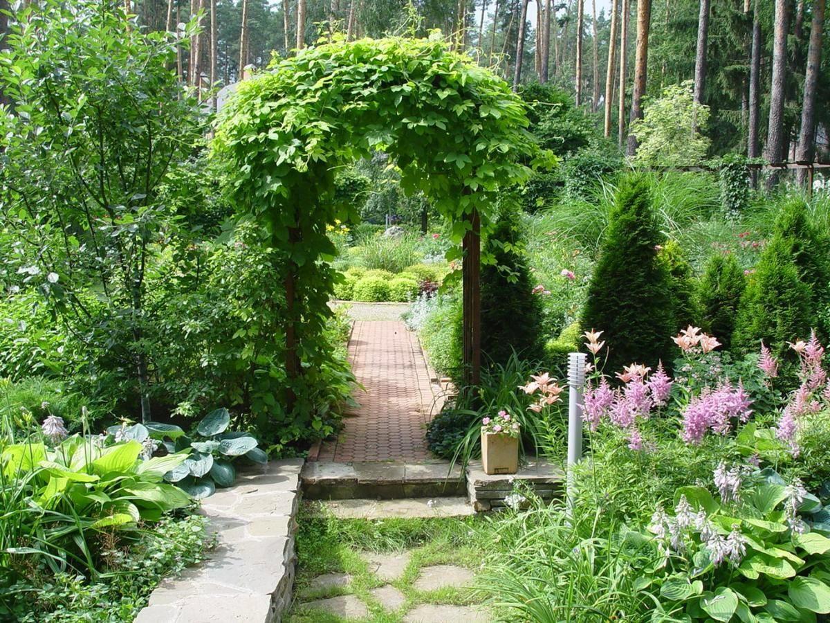 Фото садовый дизайн 10 фотография