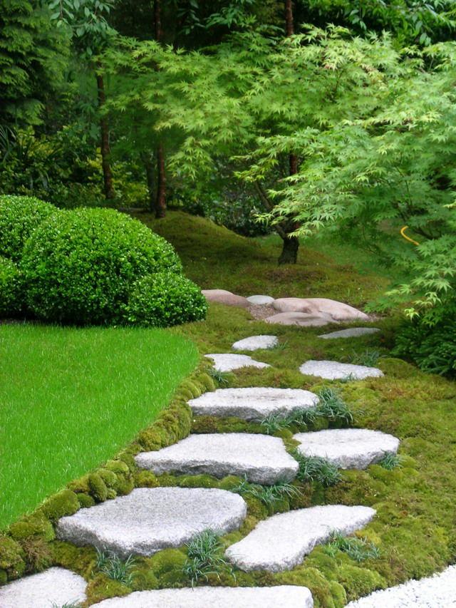Ландшафт в цветах: светло-серый, белый, темно-зеленый, салатовый, бежевый. Ландшафт в стиле экологический стиль.
