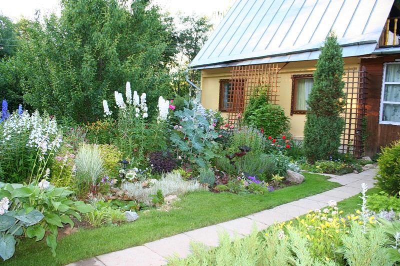 Садовый участок 4 сотки дизайн
