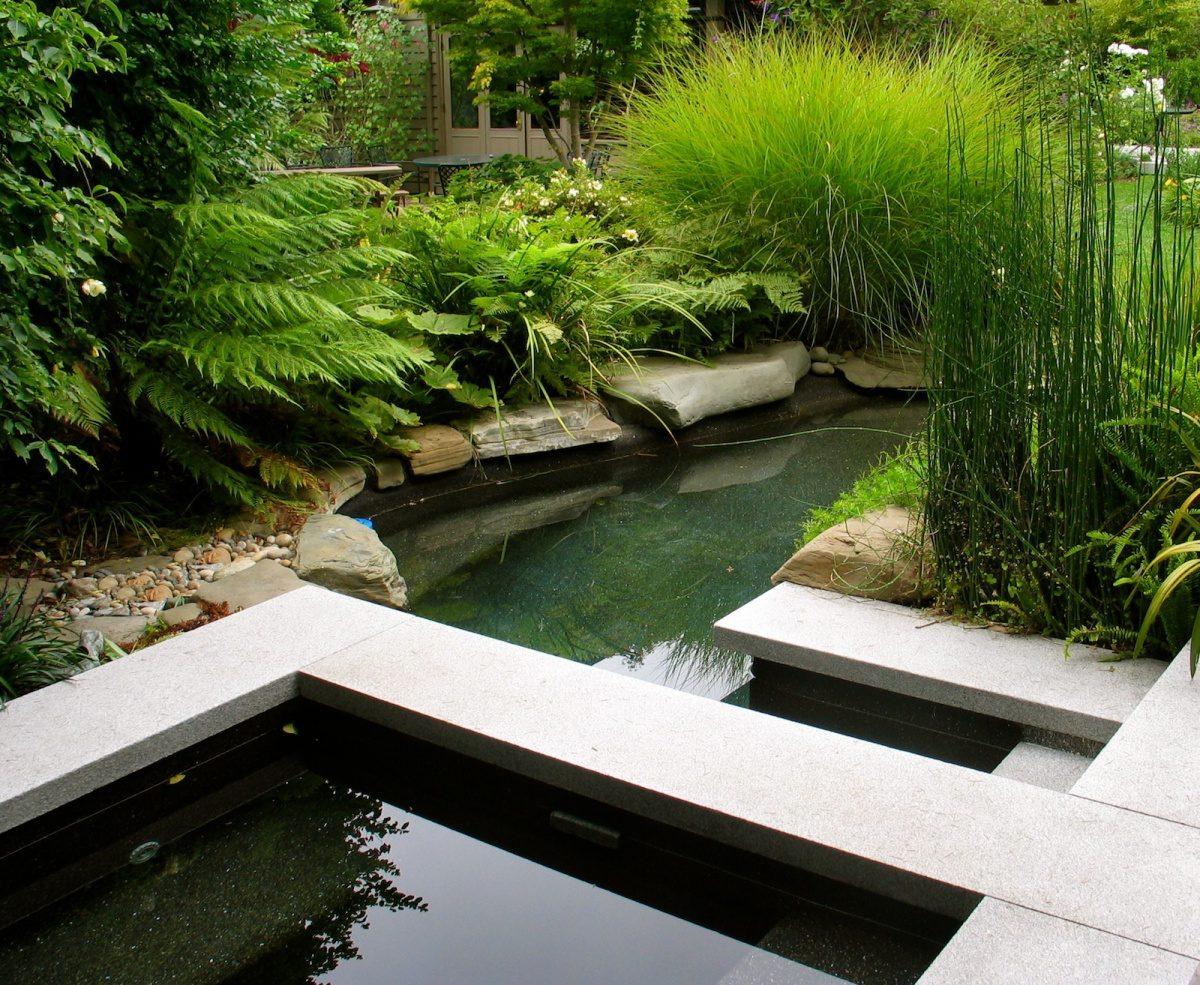 Дизайн участка с прудом