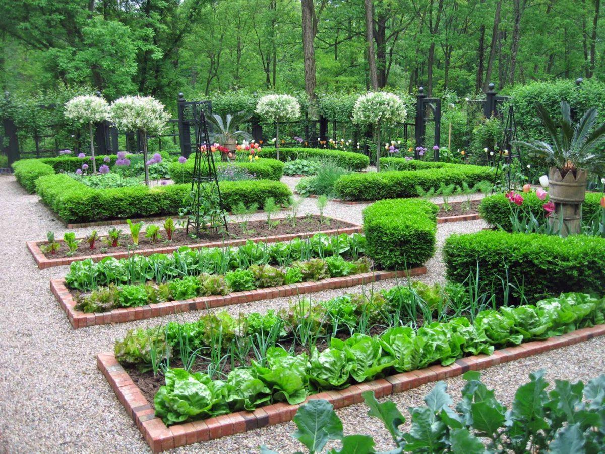 Сад и огород цветники